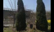 爆料:刨人祖坟没商量!这支南通铁路施工队太缺德了!