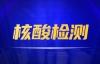 春节返乡有关核酸检测的疑问,这里都说清楚了!